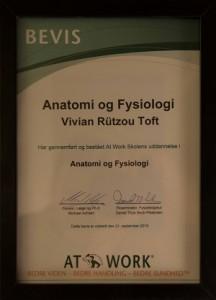 Anatomiogfysiologi